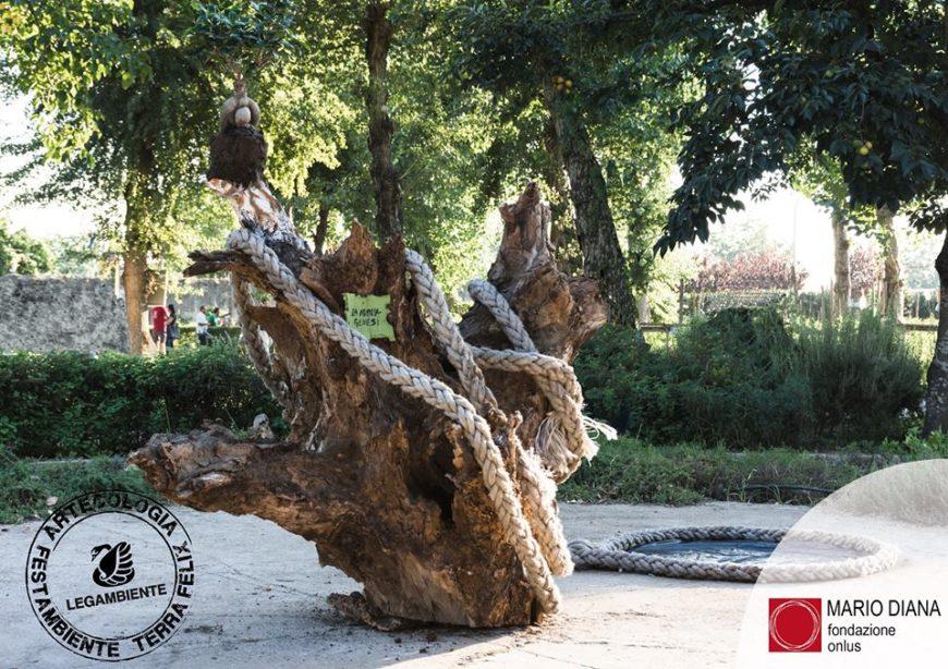 """ArtEcologia: a """"La Nascita della vita"""" il Premio Fondazione Mario Diana"""